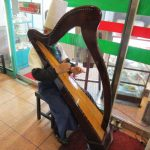 イタリア(オーナーのハープ演奏)